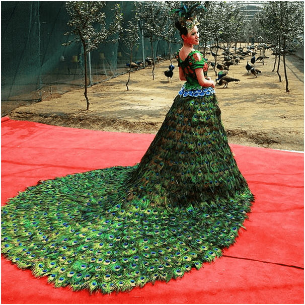 peacock 10 Celebrities Who Wore World Most Expensive Wedding Dresses