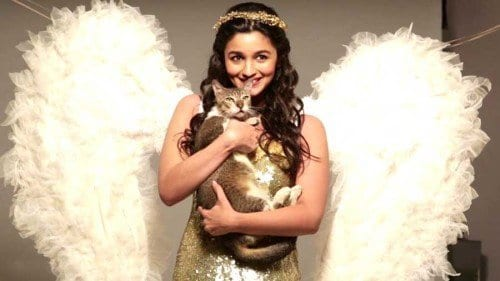 ab11-500x281 Alia Bhatt Cutest Pictures-30 Best Looks of Alia Bhatt of all Time