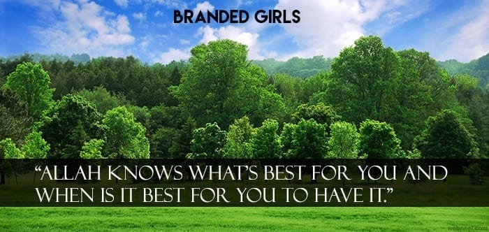 11-nature-photography-green Islamic Cover Photos-30 Best Facebook Covers Photos with Quotations