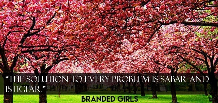 3-nature-photography-cherry-tree Islamic Cover Photos-30 Best Facebook Covers Photos with Quotations