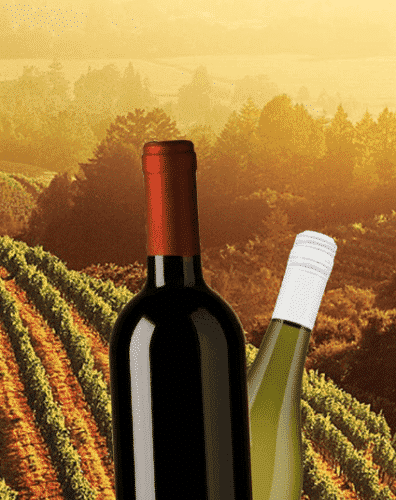 best-brands-of-red-wine-396x500 Top 10 red wine brands 2018 - Red Wine Brand Names List